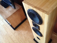 Fostex fw-137, Audience a-3 in diy loudspeakers