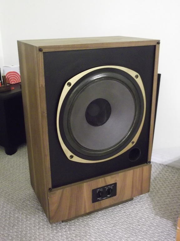Tannoy 15in.