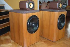 B&W (Bowers & Wilkins) 801