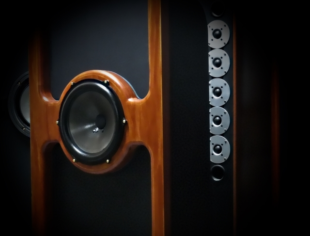 Coaxial Mounted Woofer