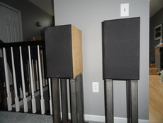 Fritz Speakers Carbon 7's