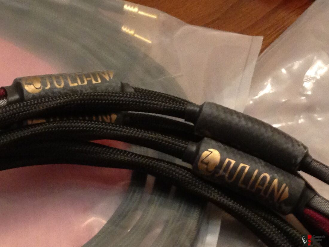 Zu Julian Bi Wire Speaker Cables Photo #1088069 - US Audio Mart