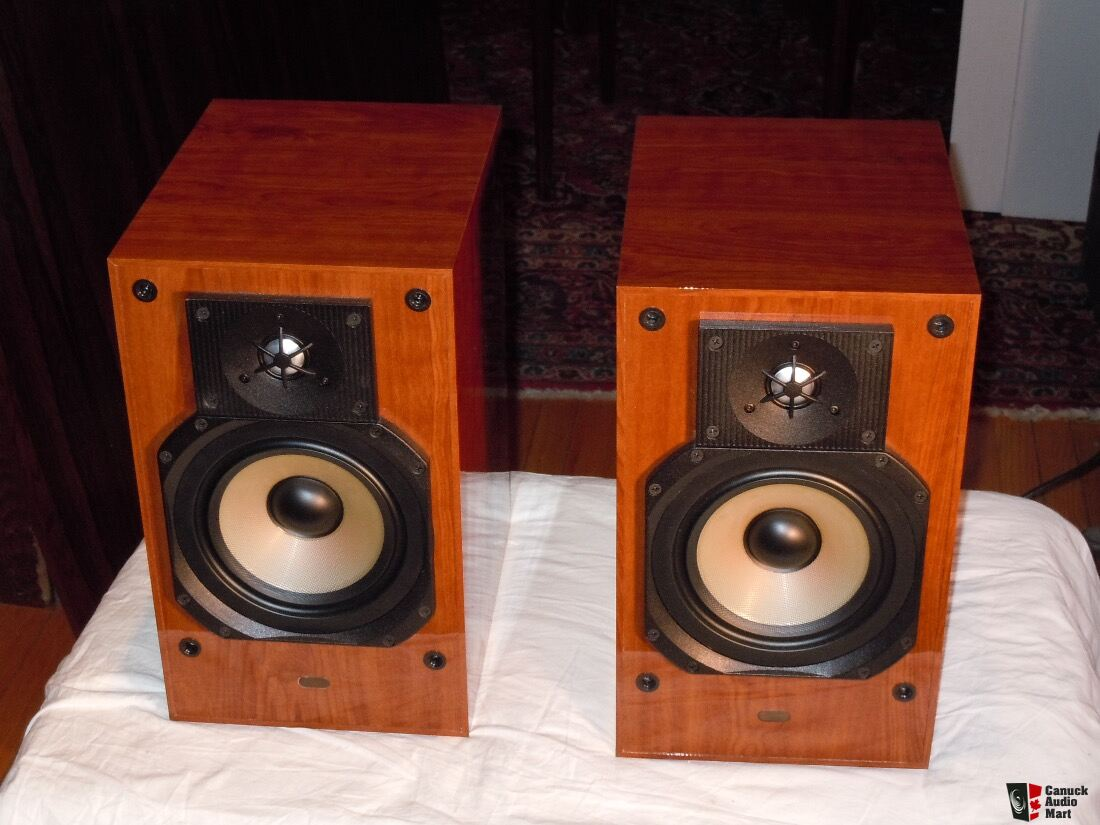 Paradigm ACTIVE 20 Speakers in Gloss Cherry