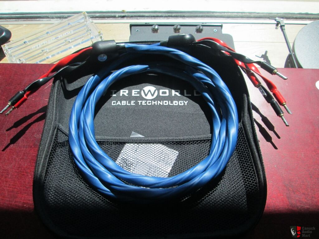 Wireworld Oasis 7 8ft Bi-Wire Speaker cables - SOLD Photo #1225915 ...