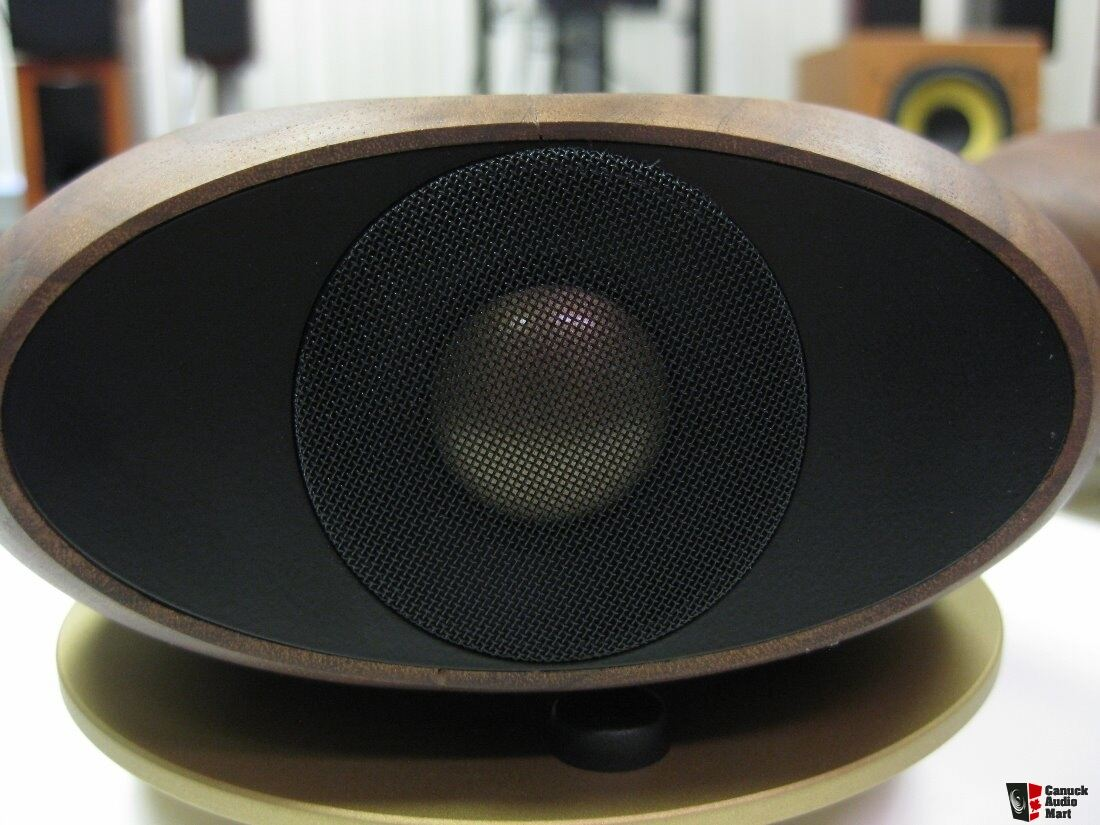 tannoy st200 supertweeters photo 1284402 canuck audio mart. Black Bedroom Furniture Sets. Home Design Ideas