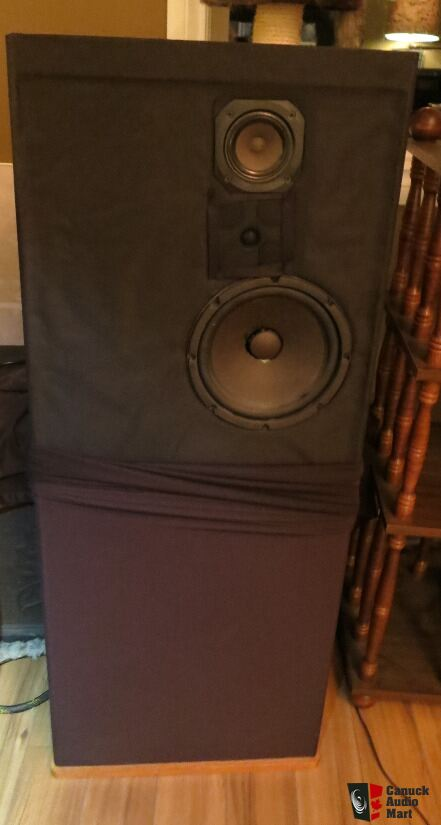 Dcm Timeframe Tf 600 Floor Standing Speakers Carpet