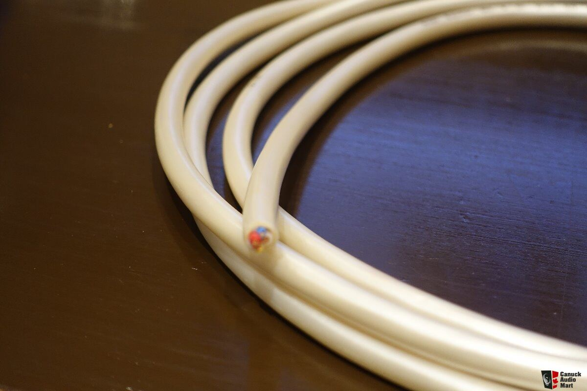 Awesome Canaris Piano Wire Images Pioneer 1300mp Wiring-diagram