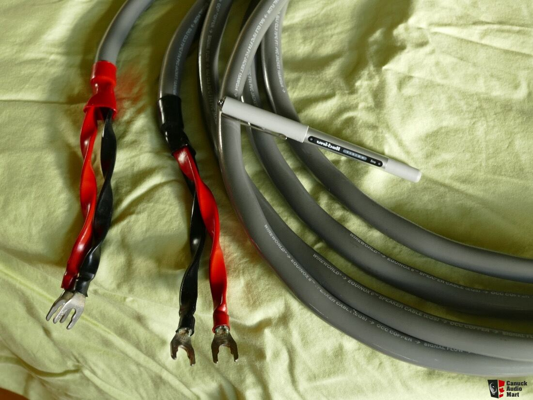 Wireworld Equinox 6 speaker cable 3.5 meter long spades to ...