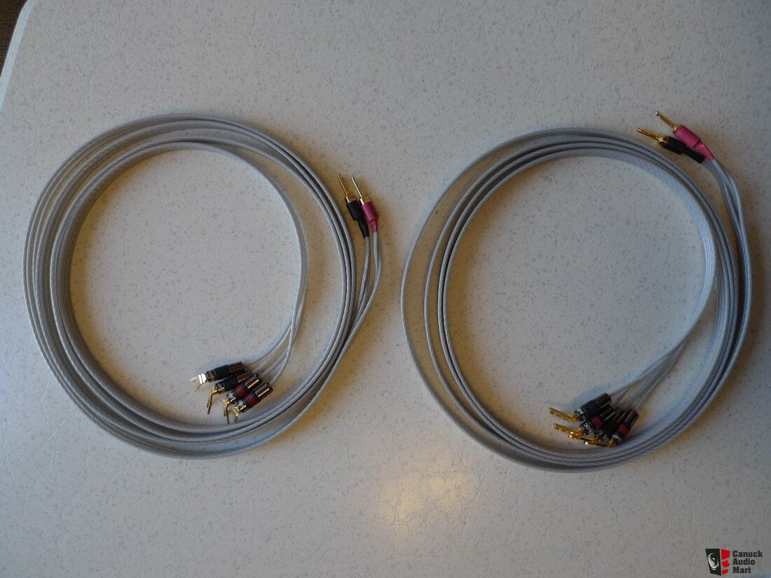 Outstanding Qed Bi Wire Speaker Cable Pattern - The Wire - magnox.info