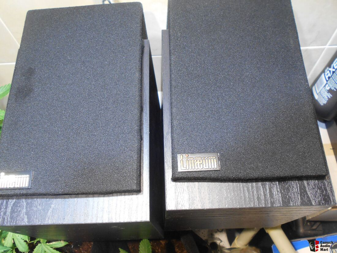 Lineaum LFX Audiophile Speaers With Stands