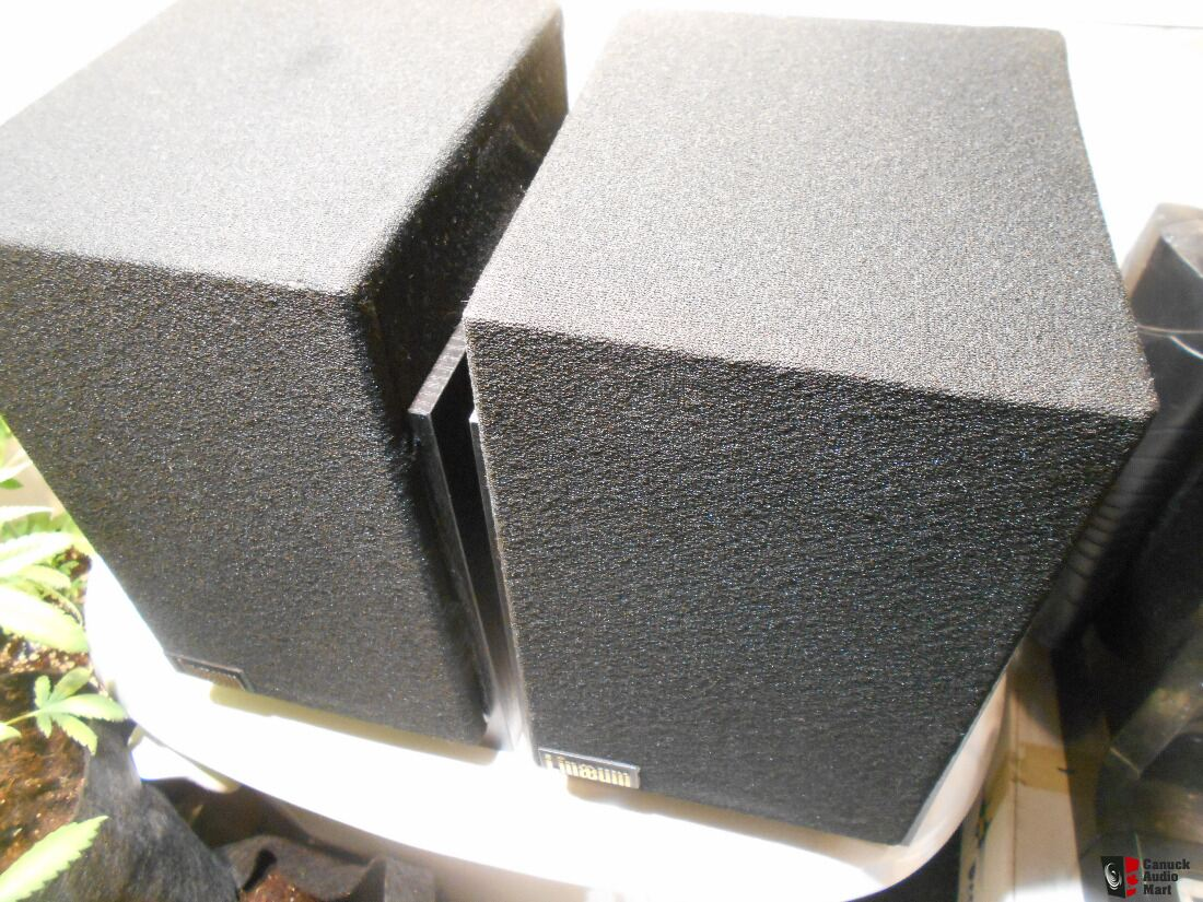 Lineaum LFX Audiophile Speakers With Stands -$350 OBO