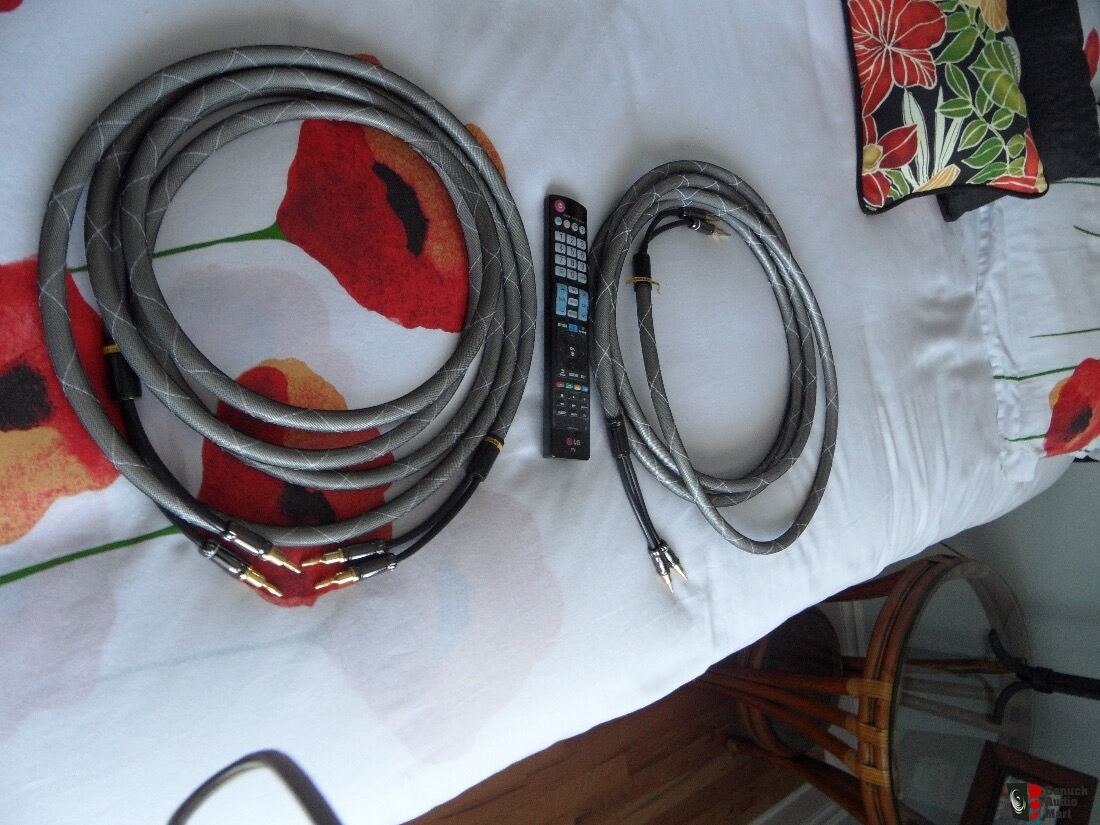 Custom Speaker Cable Banana Plug wires from CAV Audio ...