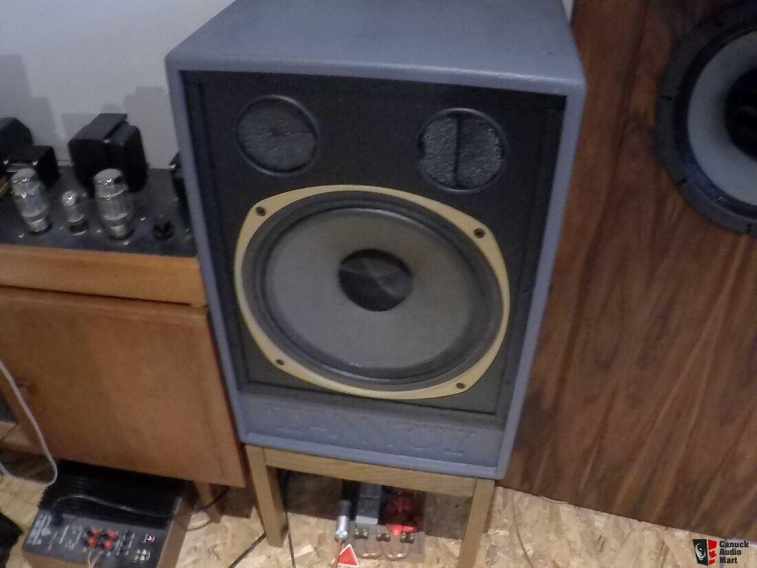 Ficticio Factibilidad aire  Tannoy wildcat puma speakers 15 inch 3805 dualconcentric monitors ...