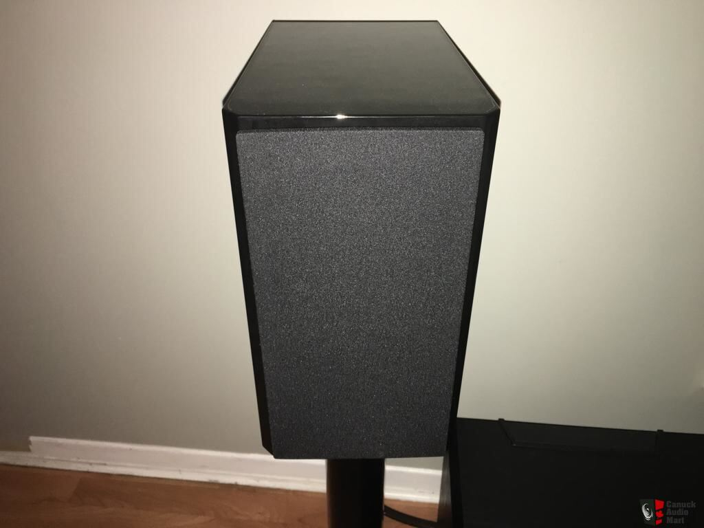 Dynaudio special 40 anniverssary version - GREY