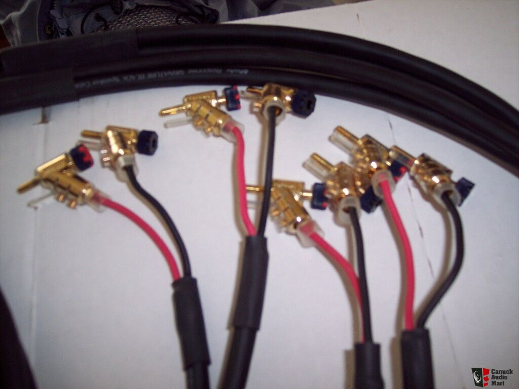 Wiring Shielded Cable Moreover Fender Input Jack Wiring