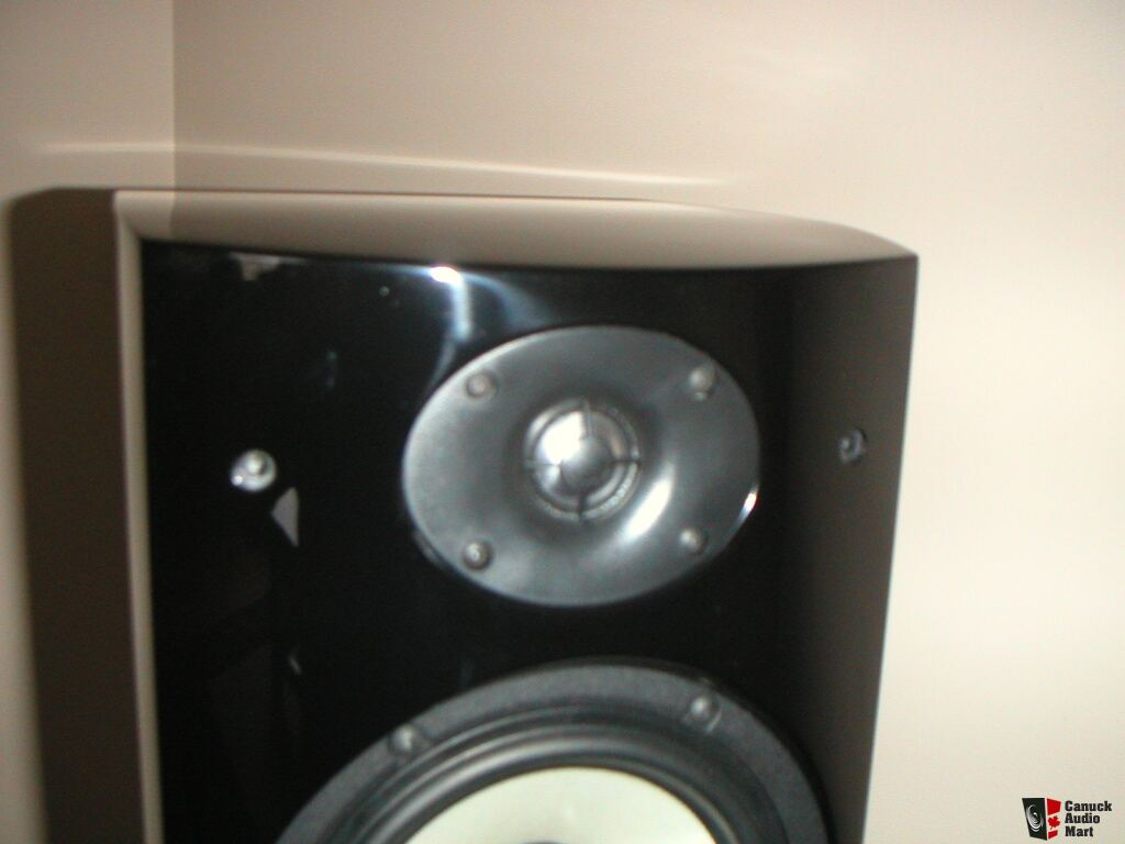psb gb1 bookshelf monitors gloss black mint cond with obm traded to mike r  mb photo 473988