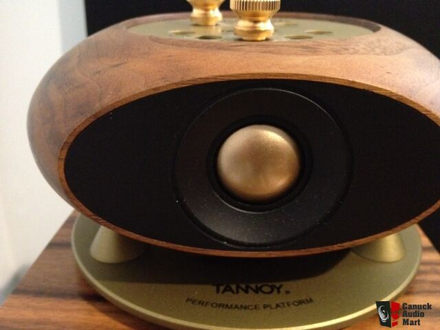 Tannoy St200 Super Tweeter Used Photo 687222 Us Audio