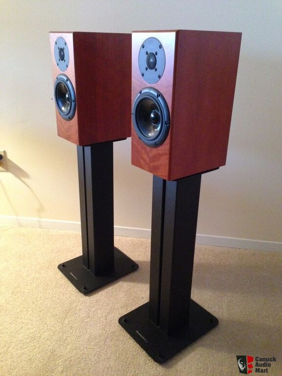 798813-totem-rainmaker-speakers-pair-with-stands.jpg