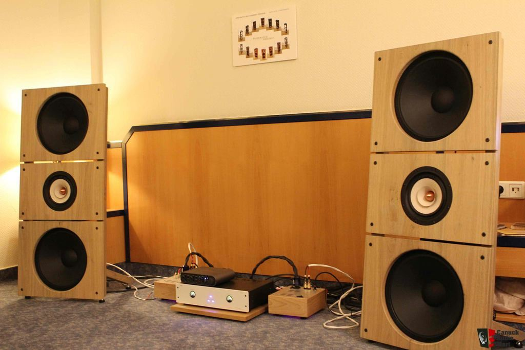 PureAudioProject Trio15TB Open Baffle Speakers (German Oak Coffee