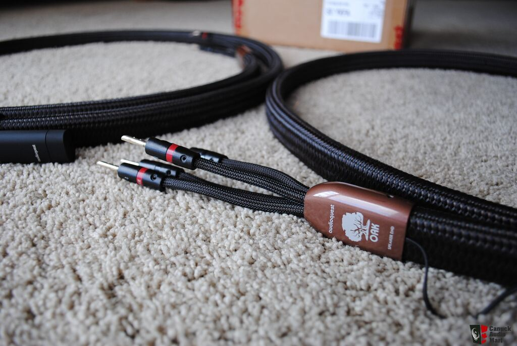 Audioquest Oak 8ft. pair bi-wire speaker cables Photo #928450 - US ...